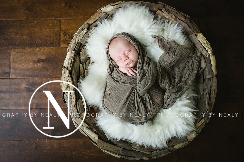 Twin-Cities-Newborn-Photographer-04