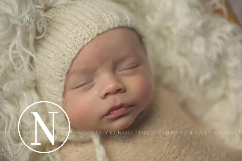 Twin cities premier newborn photographer 01