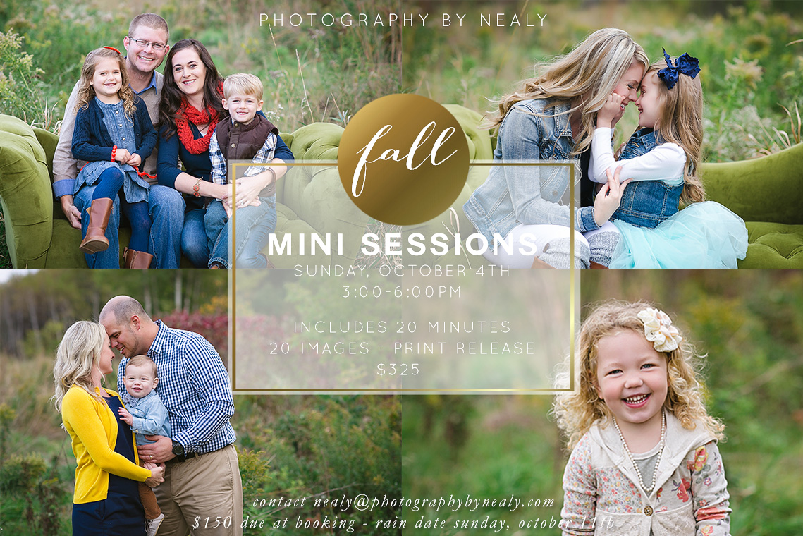 2015 Fall Mini Sessions