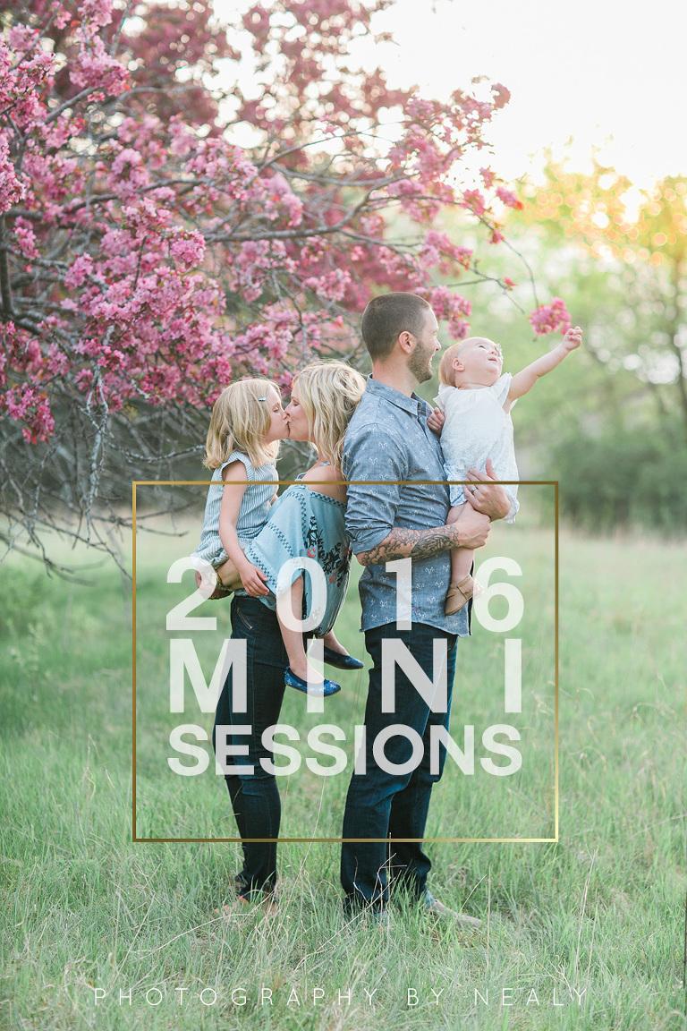 2016 mini sessions